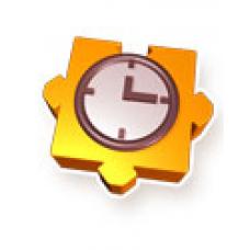 Rebex Time