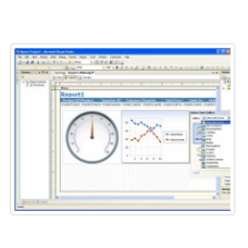 Chart FX for Reporting Services